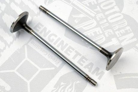 VE0069 ET ENGINETEAM Выпускной клапан