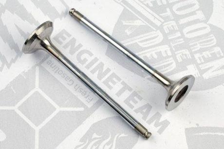 VE0102 ET ENGINETEAM Выпускной клапан