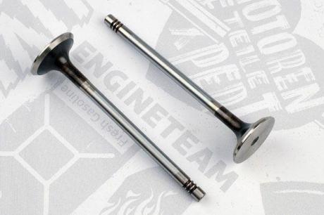 VE0131 ET ENGINETEAM Выпускной клапан