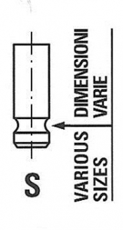 R6416/RNT FRECCIA Выпускной клапан