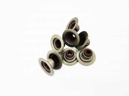 Сальник клапана (компл) Chery Amulet Karry KIMIKO 480-1007020