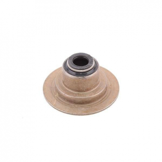 Сальник клапана Chery Amulet Karry Victor-Reinz 480-1007020